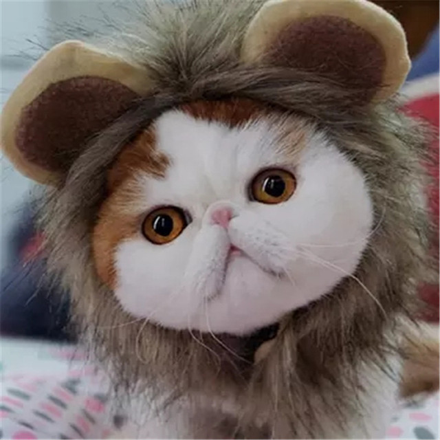 Cat Funny Lion Hat Pet Fluffy Hair Cap Little Grooming Accessories Birthday Gift Kitten Animal Hats Free Shipping