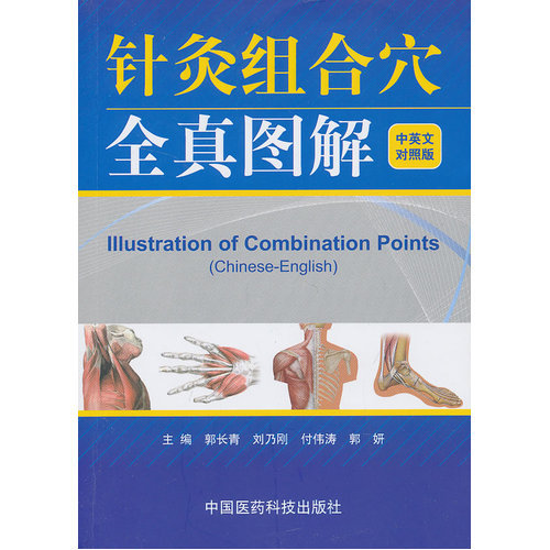 illustration of combination points Chinese-English acupuncture massage learning book
