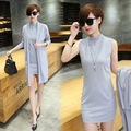 2016 New Spring Summer Women Bottoming Dress European Fashion Mandarin collar Lady Female Casual two-piece Dresses Balck Gray
