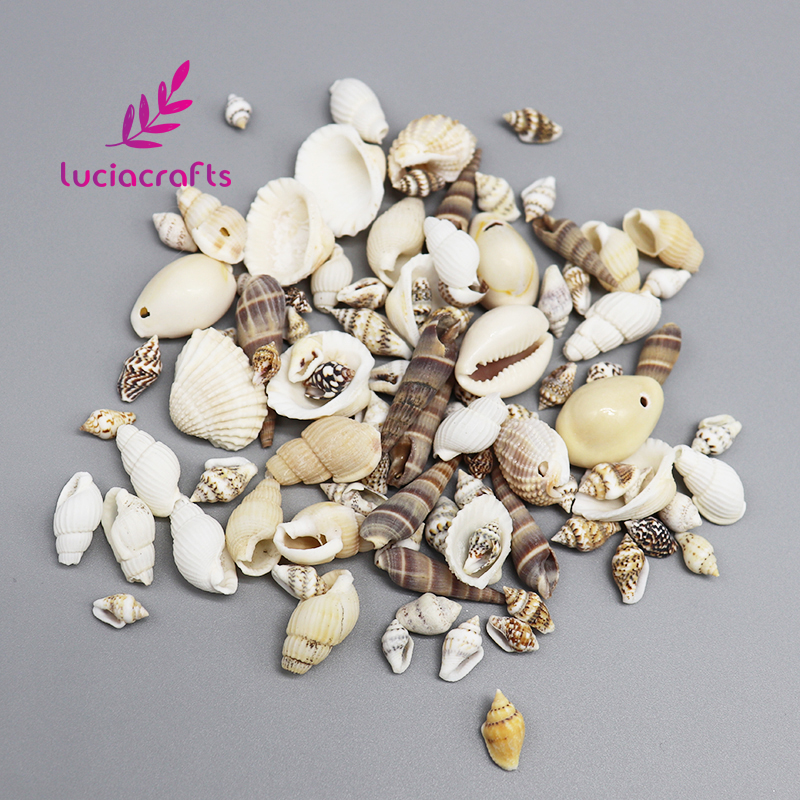 Lucia Crafts 50g (about 80pcs) Multi Size Natural Beach Fashion Seashells Loose Beads DIY Handcrafts Decoration 056005001