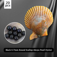 Honorable Black Pearl Oyster 6 7mm Round Pearl in Scallop Akoya Oyster,20pcs Vacuum packing Free Shipping PJW288