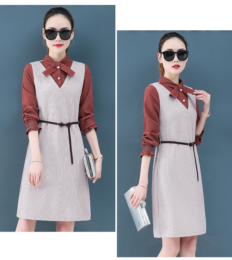 Render a dress in female new spring in the spring and autumn qiu dong fake two piece suit dress long 18