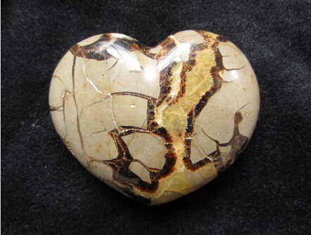 SUIRONG---331+++Ishihara natural marine turtle fossil stone heart-shaped ornaments