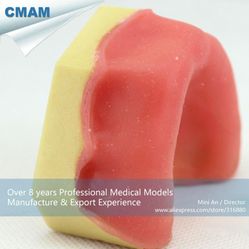 12616 CMAM-IMPLANT05 Dental Teeth Implant Model of The Lower Jaw for Drilling Training teeth orthodontic model ceramic braces wrong jaw demonstration model orthodontics practice model