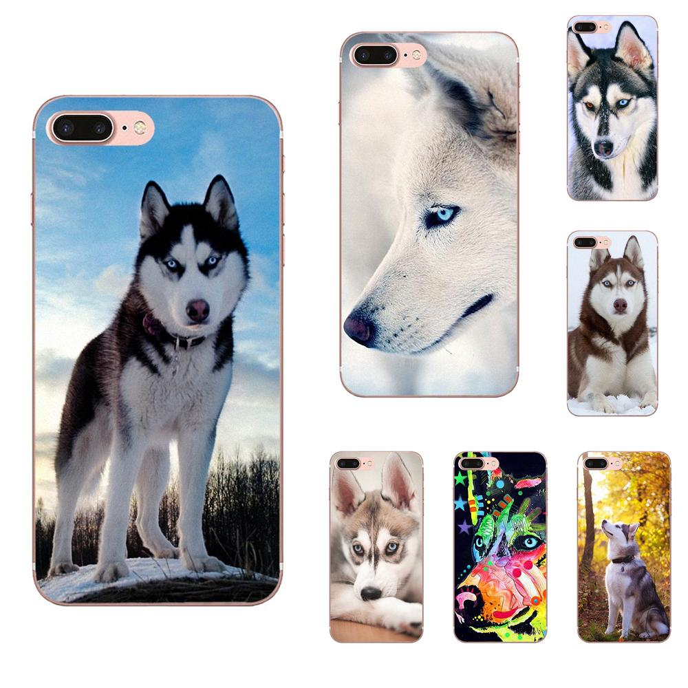 Lovely Dog <font><b>Siberian</b></font> <font><b>Husky</b></font> Protector Phone Case For Galaxy Alpha Core Prime Note 4 5 8 S3 S4 S5 S6 S7 S8 S9 mini edge Plus image