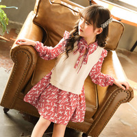 2019 spring Girl Dresses princess kids winter Dresses Children Two piece set baby girl sweater vest and dress for children,#3742