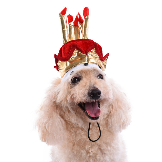 Red Pet Birthday Hat Dog Party Supplies Cake Model For Male 2017 1PCS Shipping Delivery