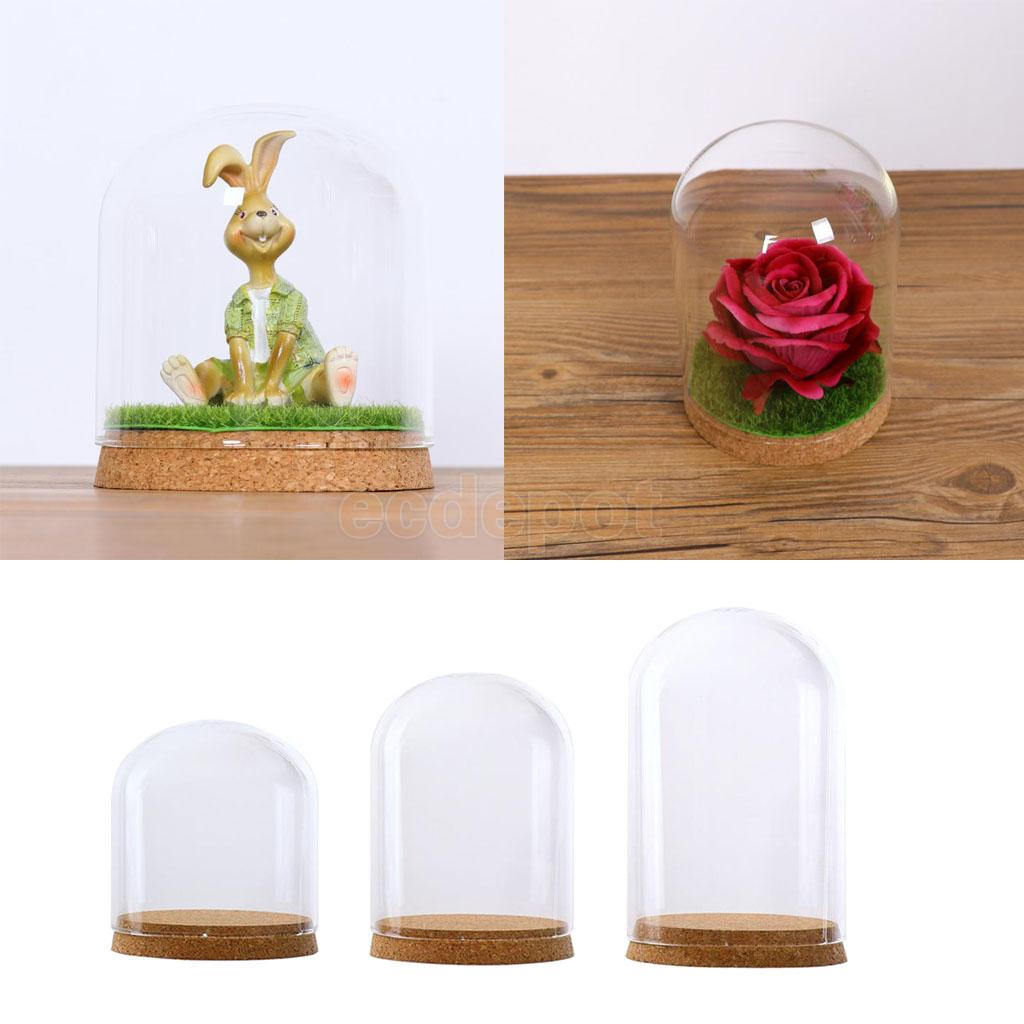 Glass Dome Cover Cloche Jar Succulent Terrariums Doll House Container with Wooden Cork