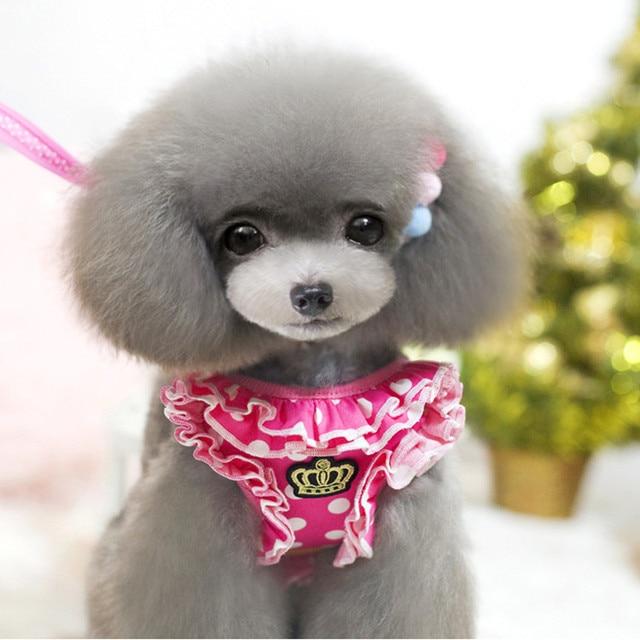 אדיר חמוד קטן יפה כלב לרתום חיות מחמד קולר כלב חתול קטן צ 'יוואווה כלב ZN-86