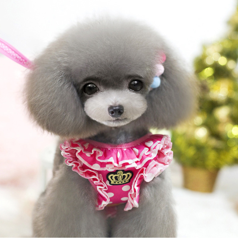 Lovely Cute Small Dog Harness Pet Cat Dog Collar For Small