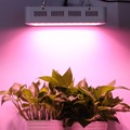 Newest designed 60x5W led grow lights 300W full spectrum grow lamp for Veg&Flower Hydroponic Plant growth lighting gardening