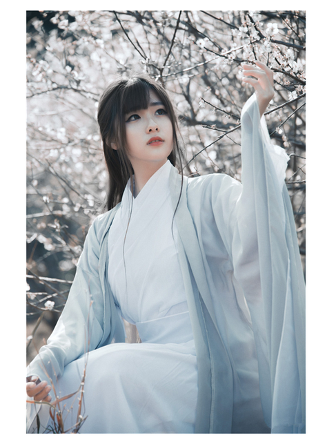 2018 winter chinese style women's hanfu costume cantonese embroidered skirt + clothes traditional chinese beautiful dance hanfu