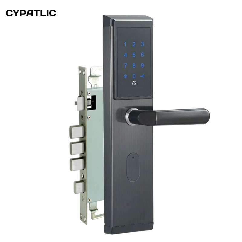 Serrure de porte sans clé numérique sans clé serrure de porte de Code de mot de passe de clavier de carte à puce pour la maison intelligente