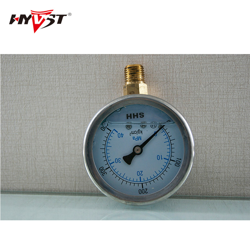HYVST Spare parts pressure gauge for SPX150-350 1501017  hyvst spare parts pump head assembly for spx150 350 1501003
