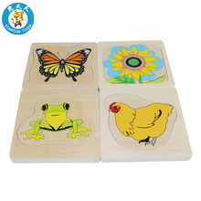 Baby Montessori Biology Toys Preschool Early Education Wooden Multi-layer Growth Puzzle Life Cycle of Animal and Plant