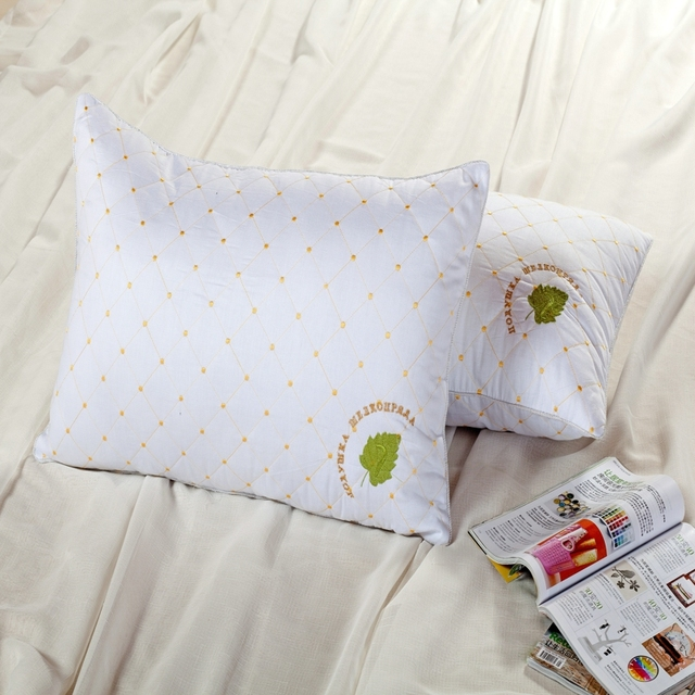 Stickerei Baumwolle Maulbeerseide Bettwäsche Kissen Atmungsaktiv