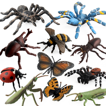 Farm Landscape Simulation Insect Model Small Animal Childrens Toys Early Education Cognitive Play Plastic