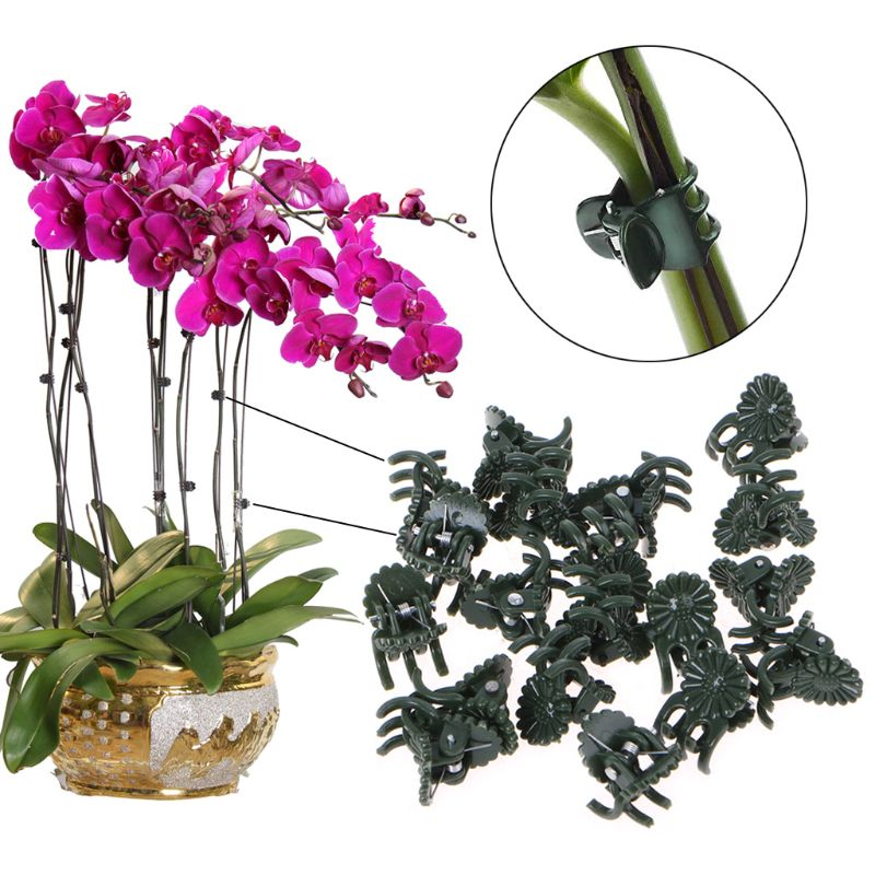 20/50PCS Plastic Plant Support Clips Orchid Stem Clip for Vine Support Vegetables Flower Tied Bundle Branch Clamping Garden Tool