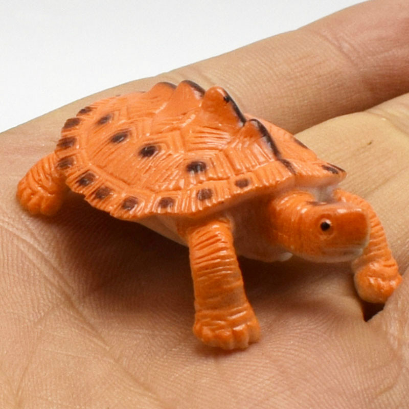 12pcs/set New Creative funny Lifelike Simulation Animals turtles model Action Figure Toy For Kids Educational toys image