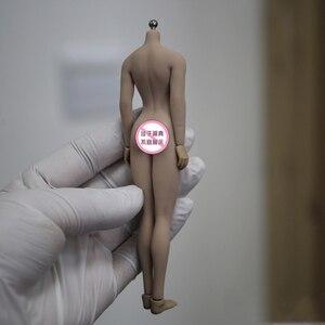 Image 2 - TBLeague 1/12 kadın vücut figürü kafa heykel PHMB2018 T01 güneş/soluk renk aksiyon figürü bebek koleksiyon Model oyuncaklar