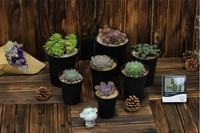 Free shipping,Vientiane Basin.black color,plastic succulents pots,flower pot plants,garden supplies,wholesale flowerpot