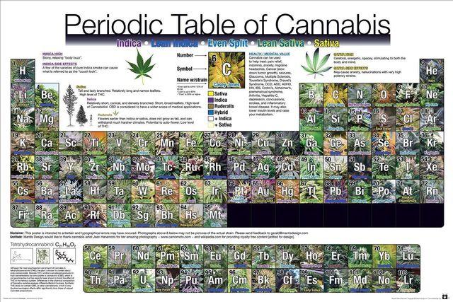 Tabla peridica de weed pot tabla lista poster decoracin de la tabla peridica de weed pot tabla lista poster decoracin de la pared 5070 cm urtaz Images