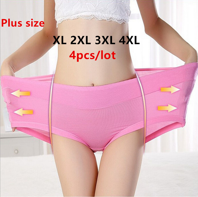 Buy 4pcs/lot Hot Sale Sexy Panties Bamboo Fiber Antibacterial Women Underwear Seamless Briefs Stretch Panties Solid Plus Size XXXXL