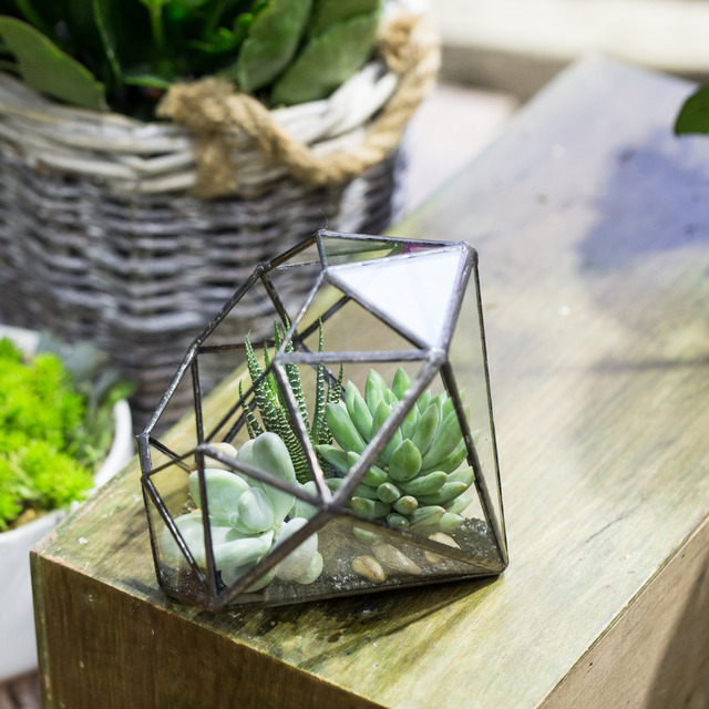 Ncyp Desktop Modern Glass Terrarium Geometric Handmade Plants