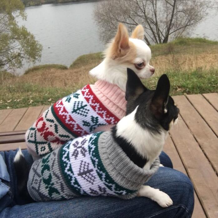Petalk Snowflower Cat Sweater Knitwear Pet Jumper Coat Dogs Cat Christmas Dog Clothes for Small Pet XS S M L XL XXL in Cat Clothing from Home Garden