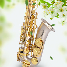 Professional Eb Alto Saxophone Drop E Surface Nickel Plated Artificial Carve Patterns Saxophone Top Musical Instrument With Case