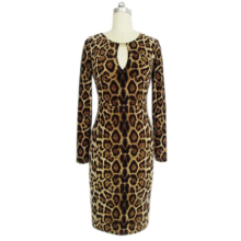 Hot Europe Celebrity Sexy Leopard Bodycon Dress Long Sleeve 1457