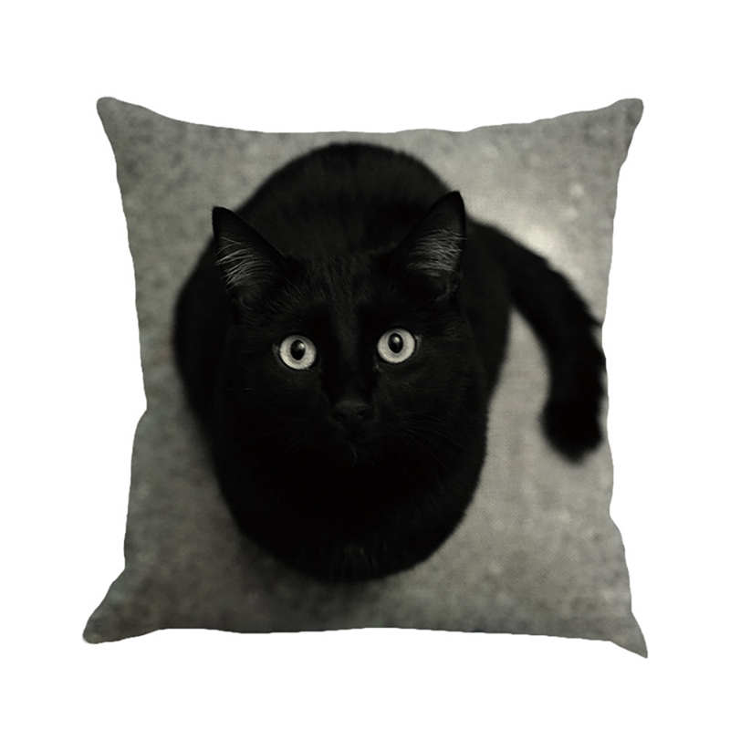 NAIYUE Square 45cm 45cm Cat Square Pillowcase Home Decoration Bedroom Cushion Cover Pillowcase Decor White Silk