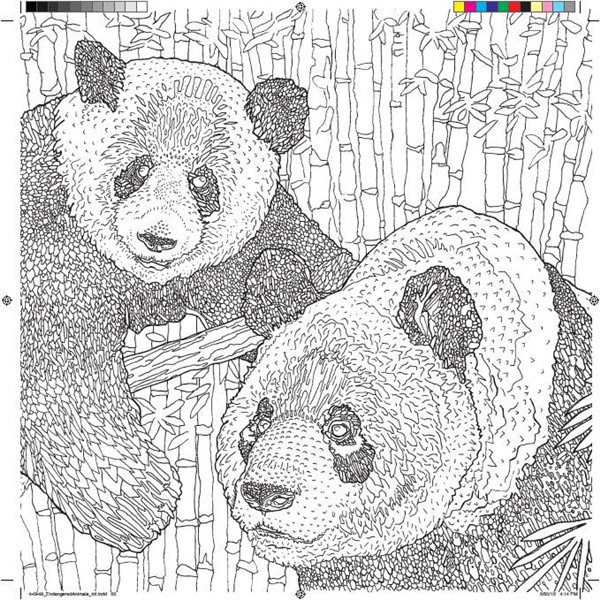 Panda Kaplan Nesli Tukenmekte Olan Hayvan Boyama Kitabi Cizgi