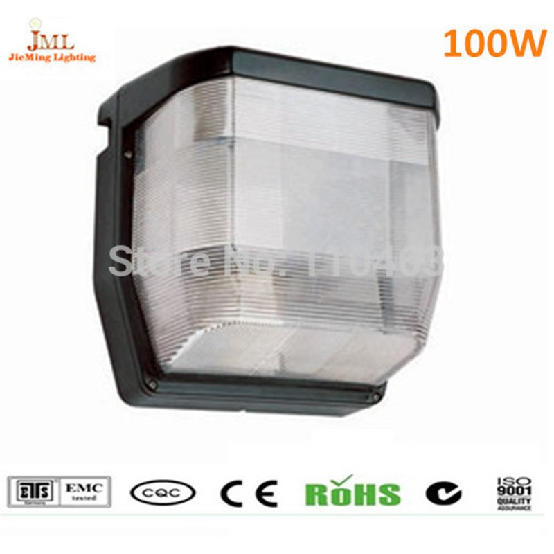 Outdoor ceiling lighting indoor bedroom Down light ceiling lamps 100w waterproof IP65 induction ceiling light AC220V lamps