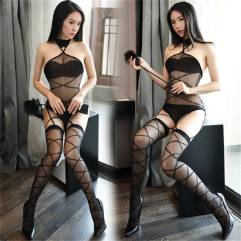 Teddy Transparent Mesh Bodysuits