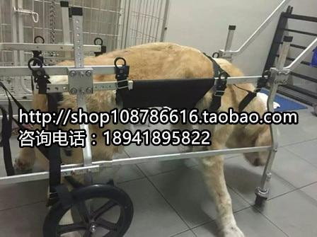 Pet cart paralyzed dog font b wheelchair b font big dog font b wheelchair b font