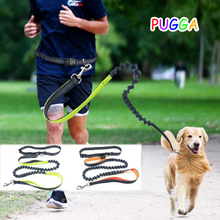 Adjustable Waist Pet Dog Leash Running Jogging Puppy Dog Lead Walking Leash Green Orange Pink Blue