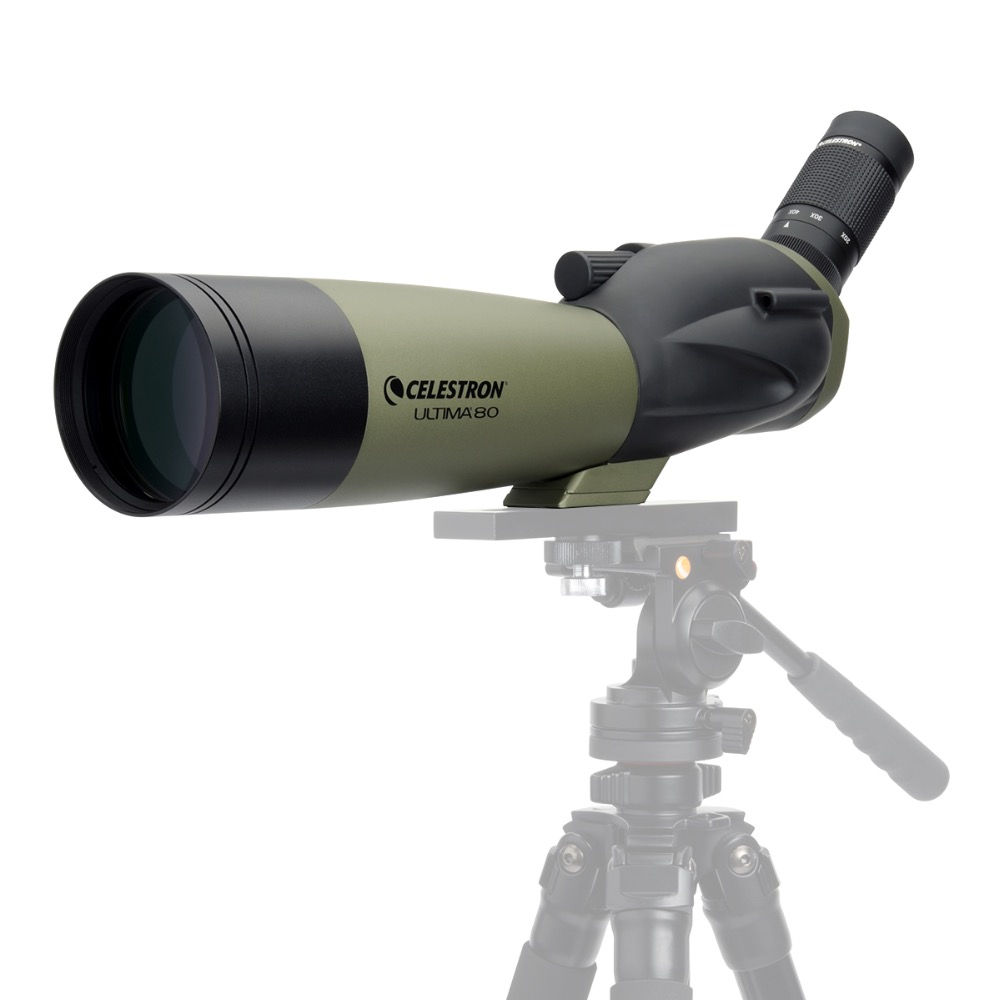 Celestron ULTIMA80 45 Degree Refractor Spotting Scope 20x 60x Zoom Telescope Multi Coated for Bird Watching