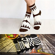 Socks058
