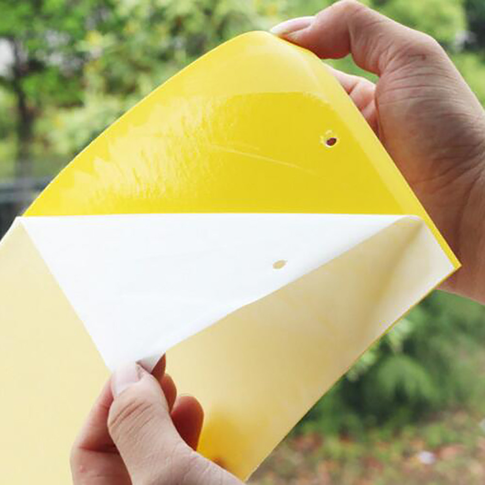 1Pcs Strong Flies Traps Bugs Sticky fly Board Catching Aphid Insects Pest Killer Glue Paper Catcher Board Summer #ZH1Pcs Strong Flies Traps Bugs Sticky fly Board Catching Aphid Insects Pest Killer Glue Paper Catcher Board Summer #ZH