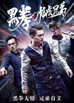 《黑拳之龙虎兄弟》2017年中国大陆犯罪电影在线观看