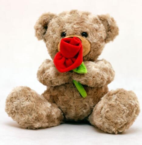 Candice Guo Dolls & Stuffed Toys Soft Plush Toy Animal Cute Cartoon Ted Teddy Bear Rose Flower Romantic Confession Lover Birthday Christmas Gift 1pc