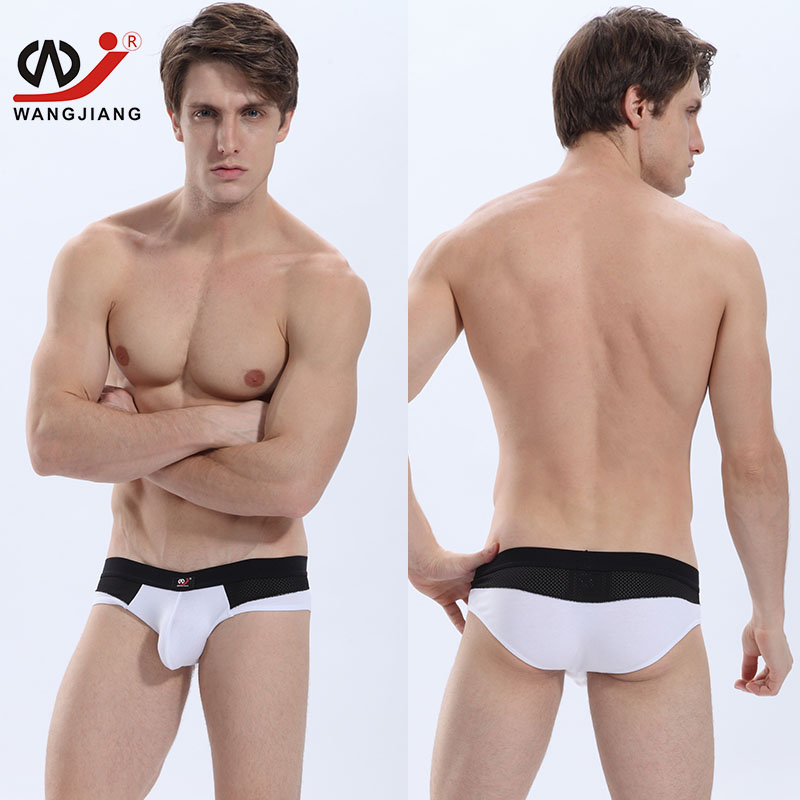 Sexy Men Underwear Calzoncillos Sexy Gay Men Underwear Briefs Brand Clothing Bikini Nylon Slip Homme Sexy Gay Underwear 4002 SJ
