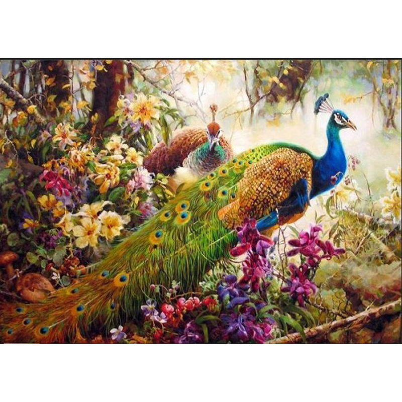 Frameless Peacock Animals Diy Painting By Numbers Hand Painted Oil Painting Wall Art Picture