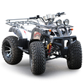 Free Shipping 250cc ATV New Dune buggy 4 Wheels 23' Tires Upgraded Rims & Tires