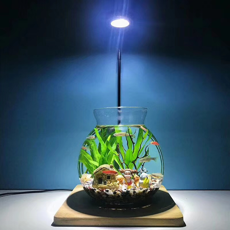 Lumière LED lampe d'aquarium 3 W-7 W Mini Aquarium lampe à LED d'eau douce + support en bambou