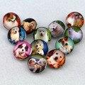 12 unids/lote recién llegado de jengibre botón a presión de 18 mm cristal botones animales perro gato owl bird de caballos 7 estilo elegir para broche botón joyería