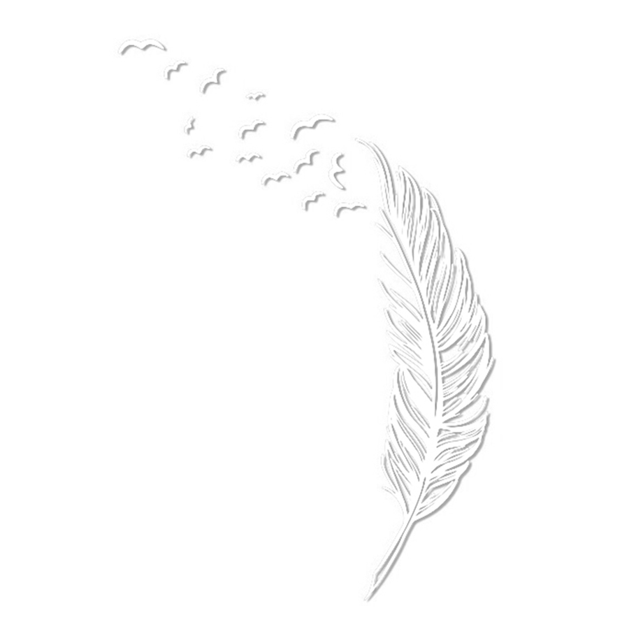 Left Flying Feather Wall Stickers Home Decor Home Decoration