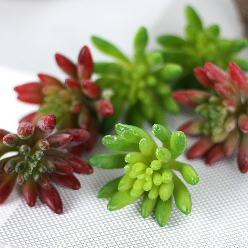 More meat plants, pepper fruit, indoor plant wall fake flowers, micro-landscape plants, home decorations