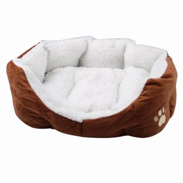 Unique Cat Beds